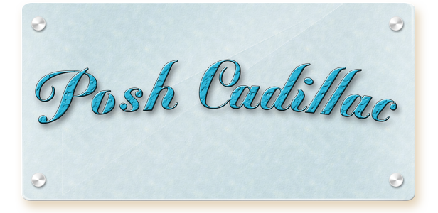 Welcome to Posh Cadillac Online Boutique Store